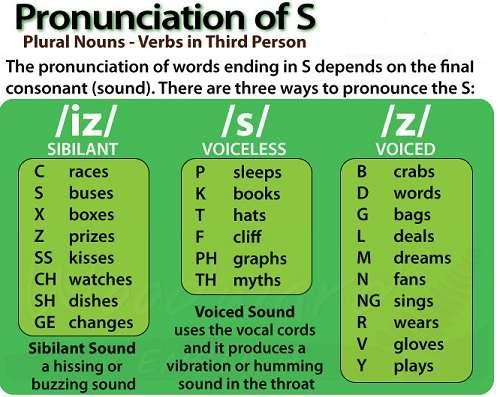 Cách đọc đuôi S/ES trong Tiếng Anh đơn giản