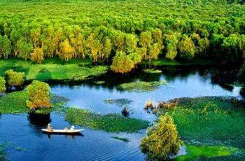 Tóm tắt bài Sông nước Cà Mau đầy đủ
