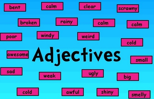 làm bài tập về tính từ