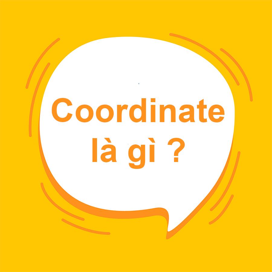 """Coordinate là gì? Giải nghĩa """"Coordinate"""" chuẩn ngữ pháp nhất"""